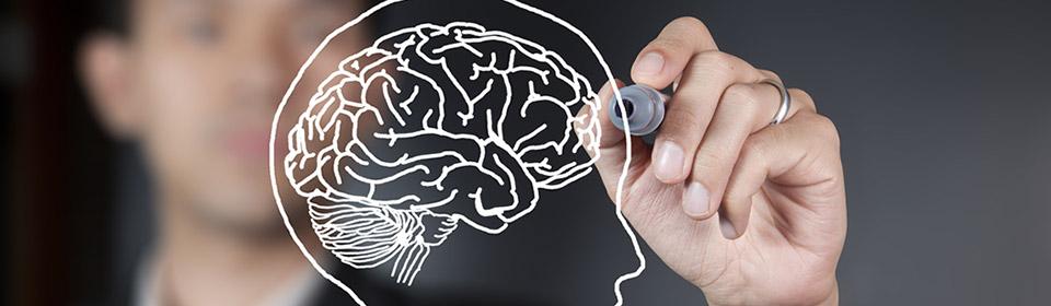 Para que serve o Neuromarketing?  Por: Alexia de la Morena